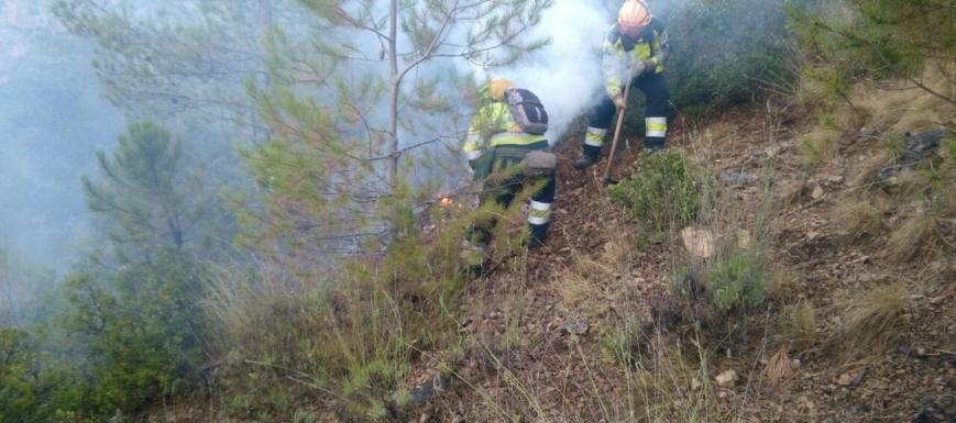 El incendio de Yeste dejó muy destruido el 87 por 100 de la zona afectada