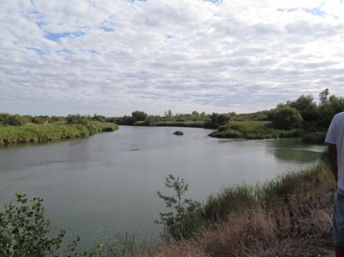 El río Jarama, en su confluencia con el Tajo, a la derecha. Foto: Charo R.