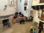 Una vaquilla embiste a dos ancianos en Cuenca tras meterse por error en las calles de la suelta