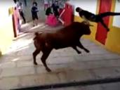 Impresionante cogida a un joven en un encierro en Bargas (Toledo)