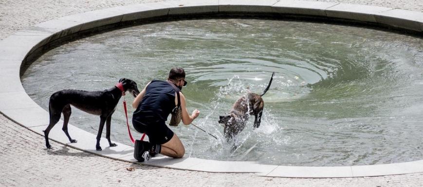 Llega el primer episodio de calor a España